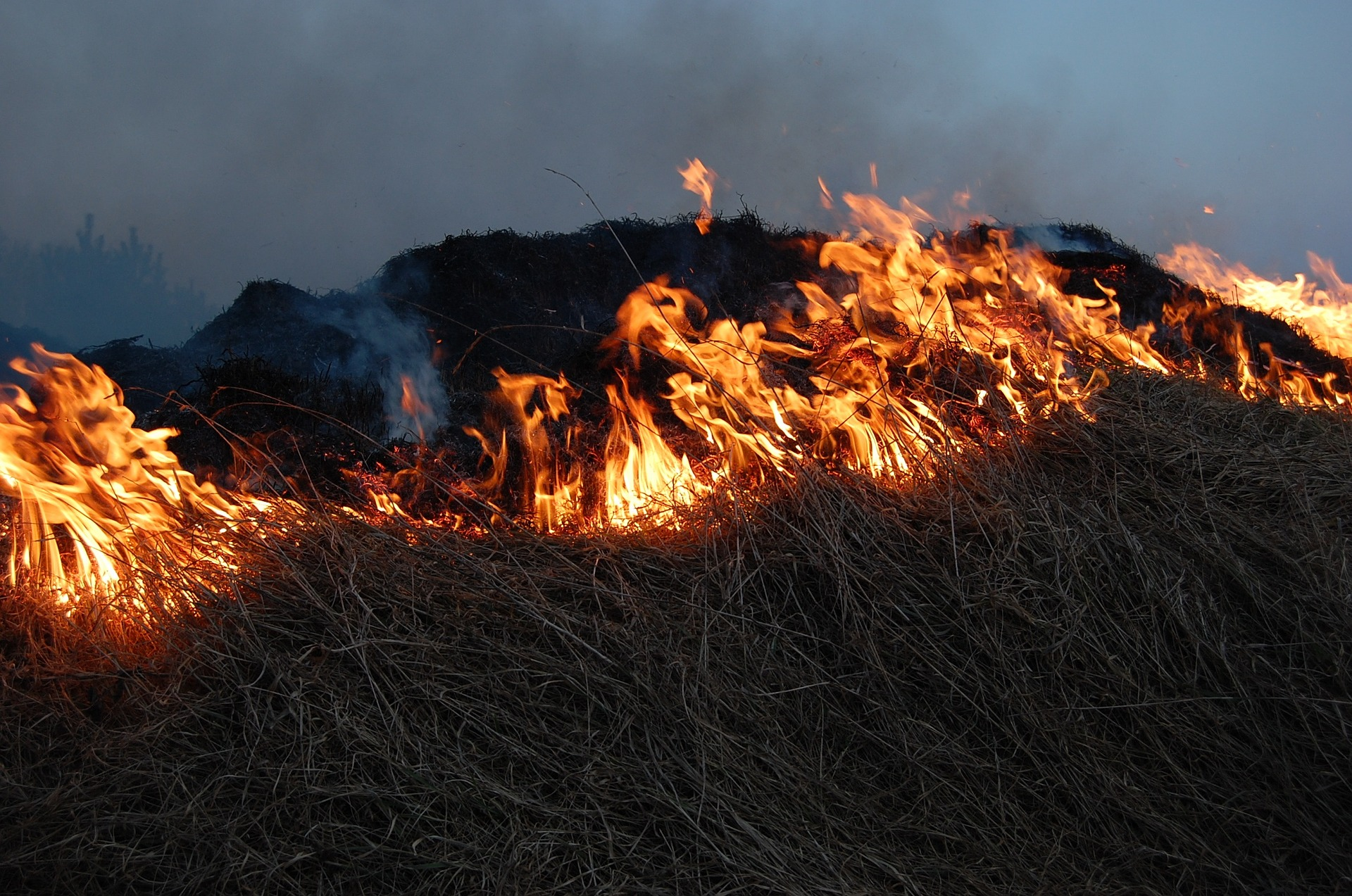 Zásah 1/2020 – požiar v Gaderskej doline